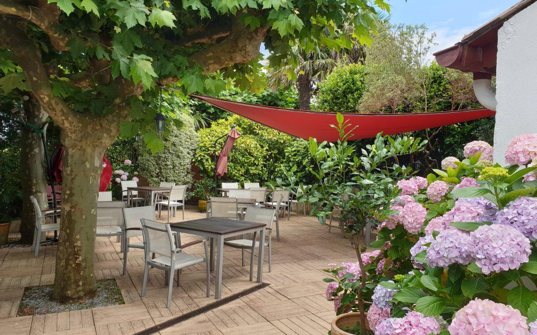 terrasse ombragé sous les platanes, avec hortensias et voile rouge du Gétaria