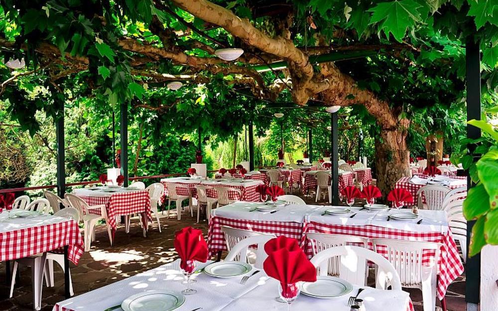 table à l'ombre des platanes Manexenea